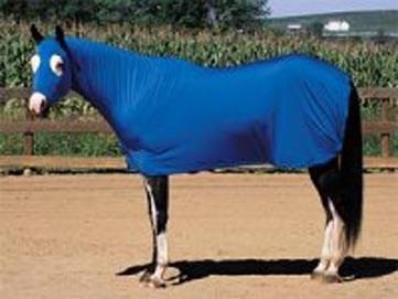 Weaver Sheet Equiskinz Large Asst. Color
