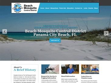 PC Beach Mosquito