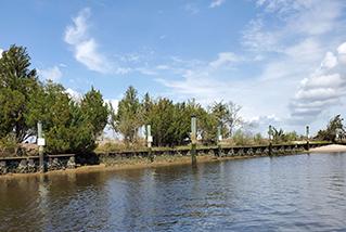 Carolina Beach Pontoon Rental