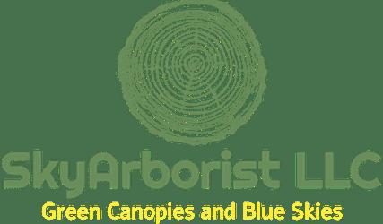 SkyAborist Logo