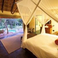 Amakhala Game Reserve - HillsNek Safari Camp - 6
