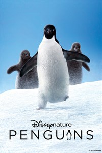 Penguins - Now Playing on Demand