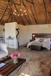 Amakhala Game Reserve - Leeuwenbosch Country House - 7