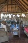 Amakhala Game Reserve - HillsNek Safari Camp - 7