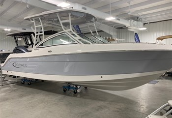 2020 Robalo R247 Alloy Gray #D0110 Boat