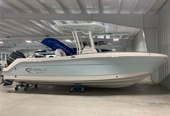 2021 Robalo R242 Explorer Ice Blue/White Boat