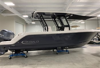 2021 Robalo R272 Shark Gray  Boat